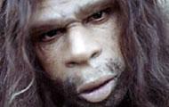 'Neanderthalers hadden heftig seksleven'