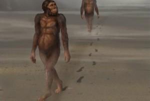 Lucy stierf 3,2 miljoen jaar geleden en liet voetsporen achter.