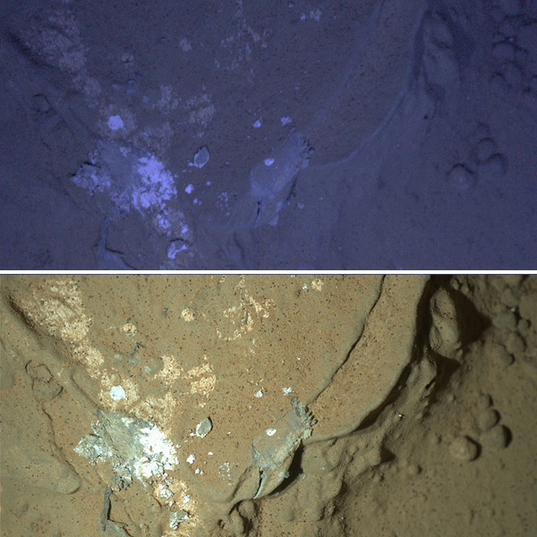 De foto boven maakte Curiosity met behulp van ultraviolet licht. De foto eronder met behulp van wit licht. Foto's: NASA / JPL-Caltech / MSSS.