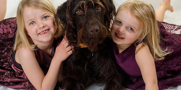 hond en kinderen