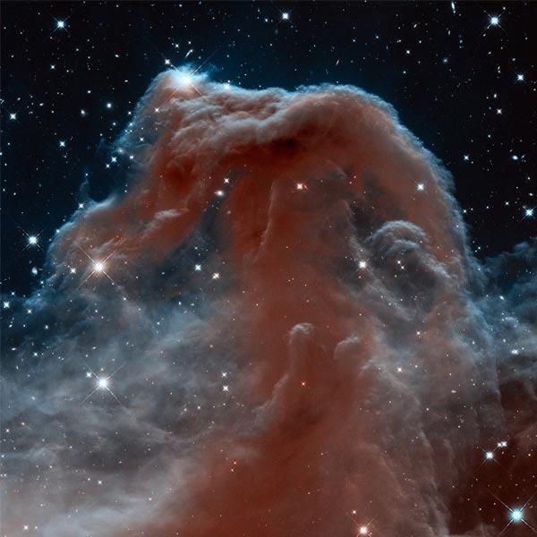 De paardenkopnevel. Foto: NASA / ESA / the Hubble Heritage Team (STScI / AURA).