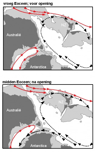De opening van de Tasmaanse zeestraat en de gevolgen die deze opening had voor de circulatie van water. Afbeelding: Universiteit Utrecht.