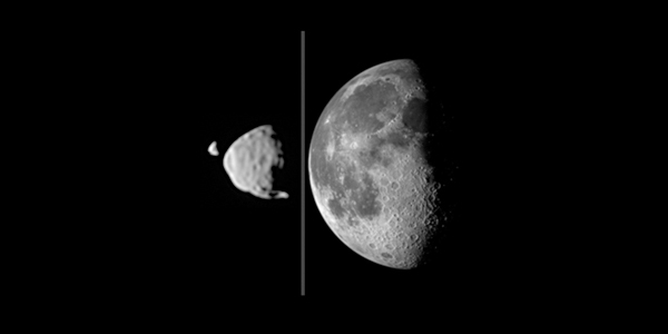 Stel dat we op het oppervlak van Mars zouden staan, hoe groot zouden Phobos en Deimos dan lijken? Op deze afbeelding ziet u hoe groot ze in vergelijking met de maan gezien vanaf de aarde zijn. Phobos en Deimos lijken heel groot, maar schijn bedriegt. De diameter van onze maan is zo'n honderd keer groter dan die van Phobos, maar omdat Phobos veel dichter bij Mars staat dan de maan bij de aarde staat, lijkt deze groter. Afbeelding: NASA / JPL-Caltech / Malin Space Science Systems / Texas A&M Univ.