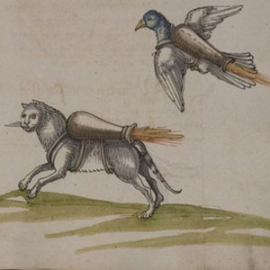 Afbeelding: Universitätsbibliothek Heidelberg, Cod. Pal. germ. 128, f.74r.