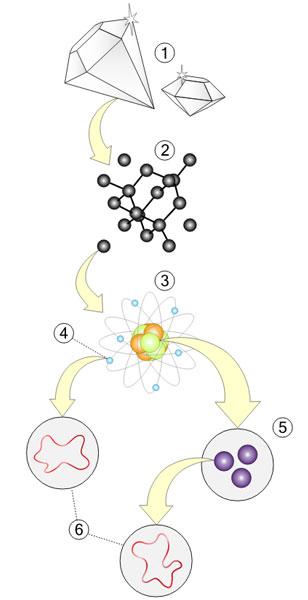 Materie (1) is volgens de snaartheorie te ontleden in moleculen (2), atomen (3), elektronen (4), quarks (5) en snaren (6). Afbeelding: MissMJ (via Wikimedia Commons).