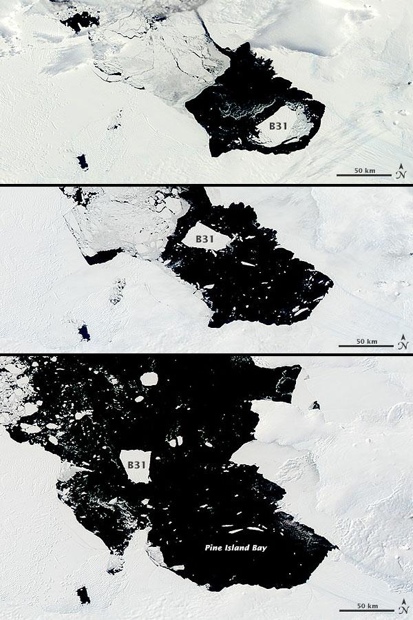 Van boven naar beneden: de ijsberg op 18 november, 10 december en 5 februari. Foto's: Jeff Schmaltz / LANCE / EOSDIS Rapid Response.