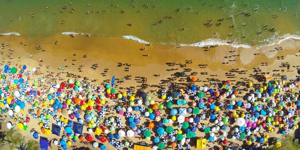 Territoriumdrift op het strand. Afbeelding: Cleferson (via Freeimages.com).
