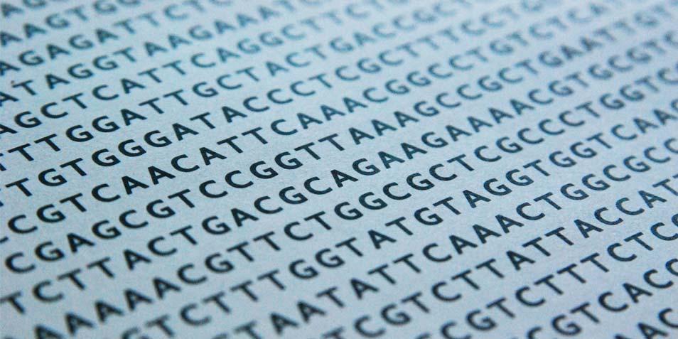 DNA-sequentie. Afbeelding: schulergd (via Freeimages.com).