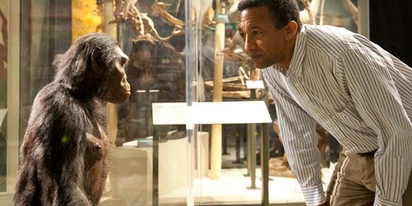 In 1974 ontdekten onderzoekers in Afrika de eerste fossiele resten van een nieuwe mensachtige: Australopithecus afarensis. Ze kreeg de naam 'Lucy'. Lucy wandelde een paar miljoen jaar geleden op aarde, maar zag er nog erg aapachtig uit.