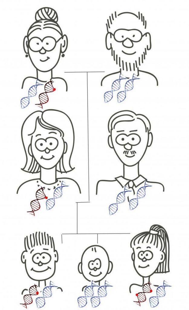 Genen die in een rol spelen in de helft van de populatie muteren vaker. Afbeelding: Weizmann Institute.