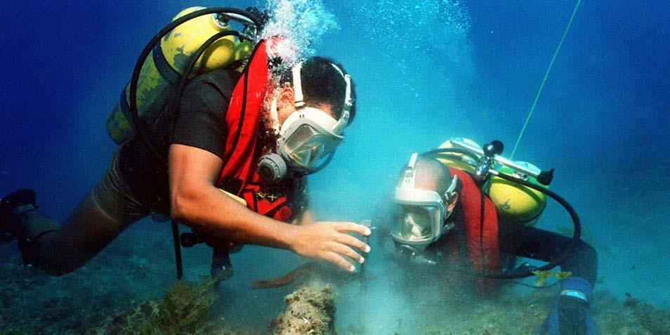 duikers