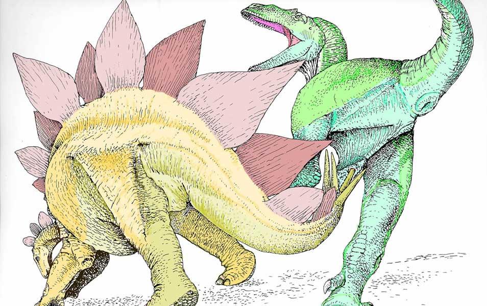 stegosaurus1