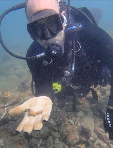 Duiker Mark Wegiel laat een artefact zien.