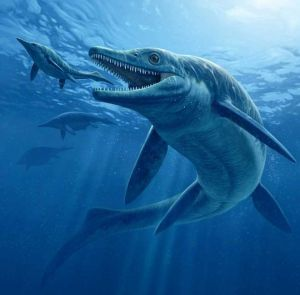 Maak kennis met de ichthyosauriër! Vindt jij dit uitgestorven zeedier ook op een dolfijn lijken?