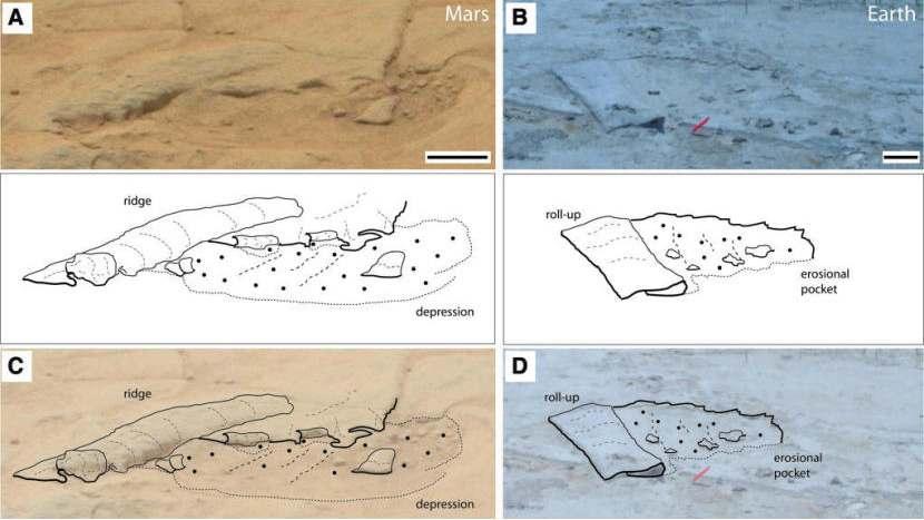 Enkele foto's die Noffke in haar onderzoek aanhaalt. Links de foto's gemaakt door Curiosity, rechts foto's gemaakt op aarde. Afbeelding: Astrobiology.