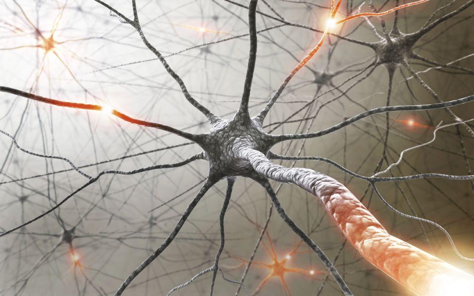 multiple_sclerosis