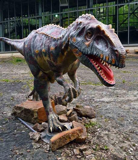 Een megalosauripus. Afbeelding: Pernille Venø Troelsen.