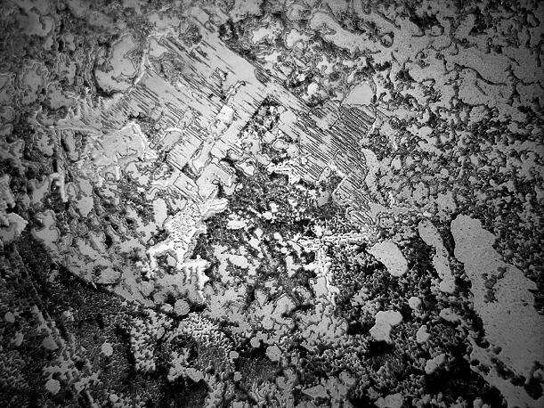 Tranen zijn als vingerafdrukken en sneeuwvlokken. Onder de microscoop is gekristalliseerd zout te zien. Echter is beeld altijd hetzelfde. Elke traan is uniek.