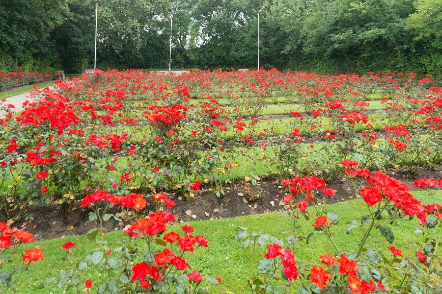 Georgische begraafplaats op Texel.