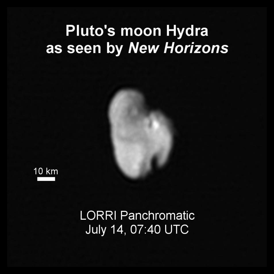 hydra1-954x954.png