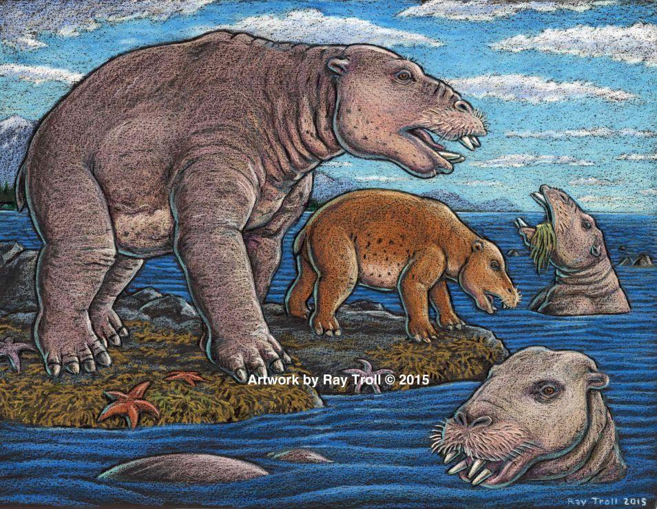 Net zoals vee in een kudde leeft, vormden Desmostylia een groep die 'troll' genoemd wordt. Afbeelding: Ray Troll.