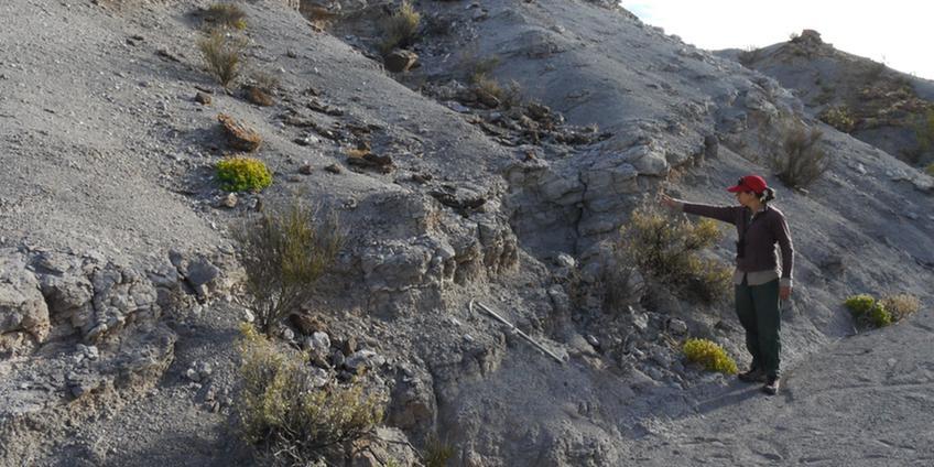 Onderzoeker Adriana Mancuso wijst een laag vulkanisch as aan in de Chañares Formatie. Afbeelding: Randall Irmis.