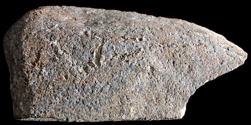 steen-2