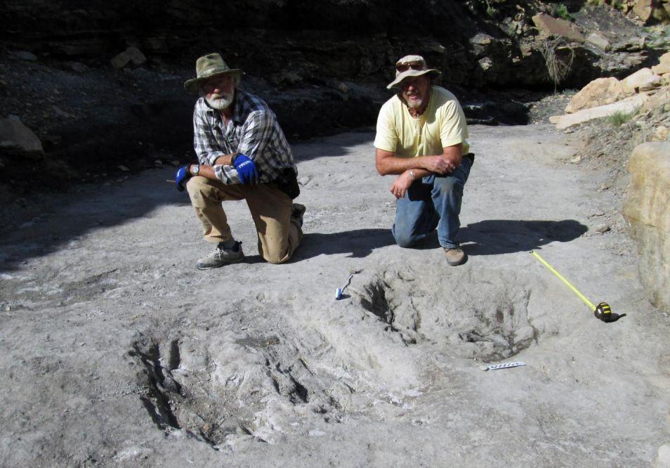 Eén van de grotere krassen die de onderzoekers ontdekt hebben. Afbeelding: University of Colorado Denver.