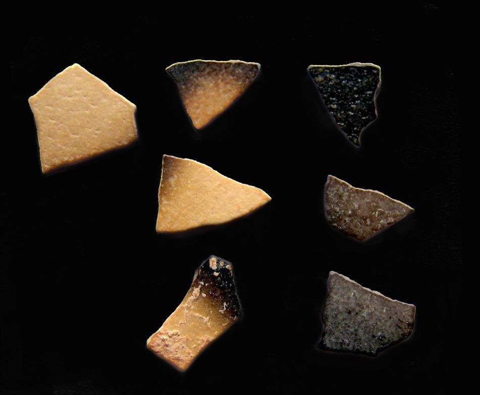 De mate waarin verschillende (delen van de) fragmenten verbrand zijn, loopt sterk uiteen. Het suggereert dat deze eierschalen niet verbrand zijn tijdens natuurbranden, maar boven door mensen gemaakte warmtebronnen. Afbeelding: University of Colorado Boulder.