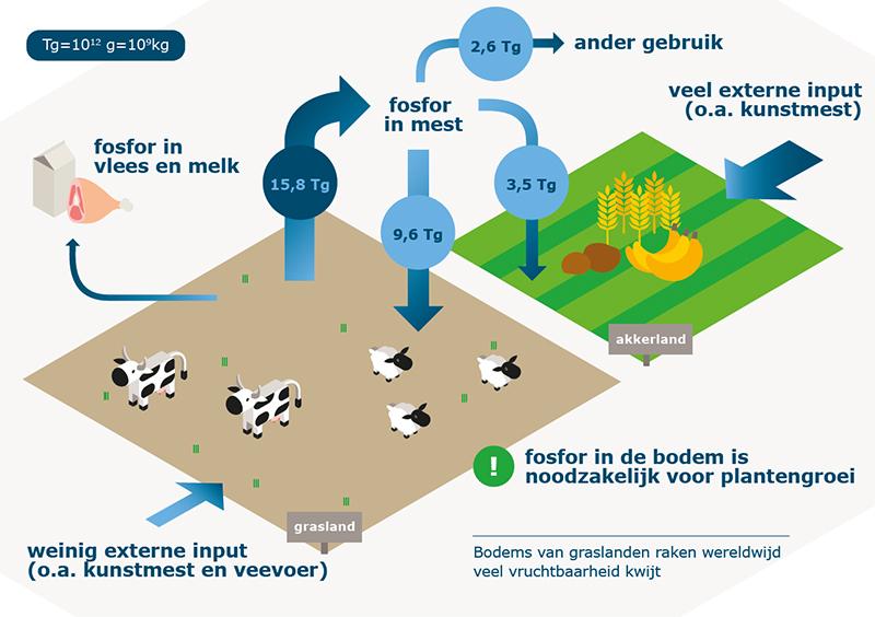 De uitputting van grasland in beeld. Afbeelding: Wageningen University.