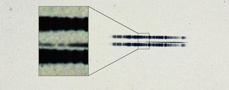 Deze opname uit 1917 getuigt van de aanwezigheid van calcium. Afbeelding: Carnegie Institution for Science.