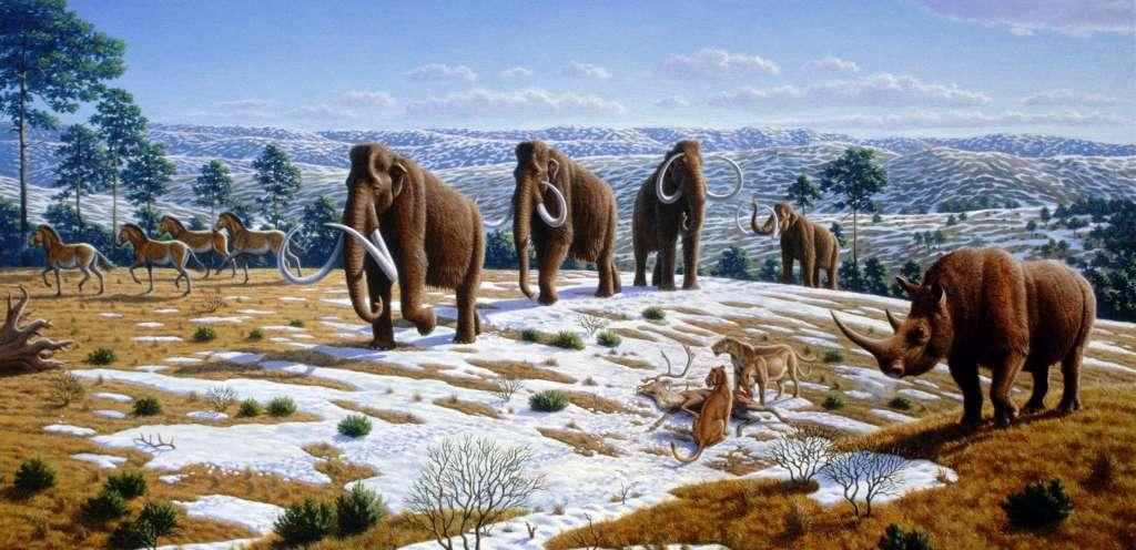De wolharige mammoet behoort tot de Euraziatische megafauna. Afbeelding: Mauricio Antón (PLoS ONE).