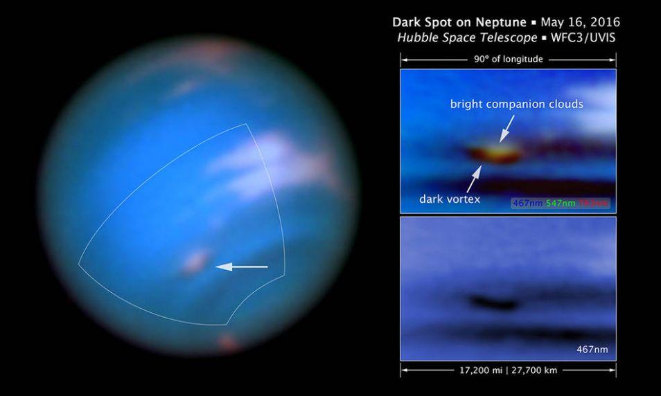 neptunus2