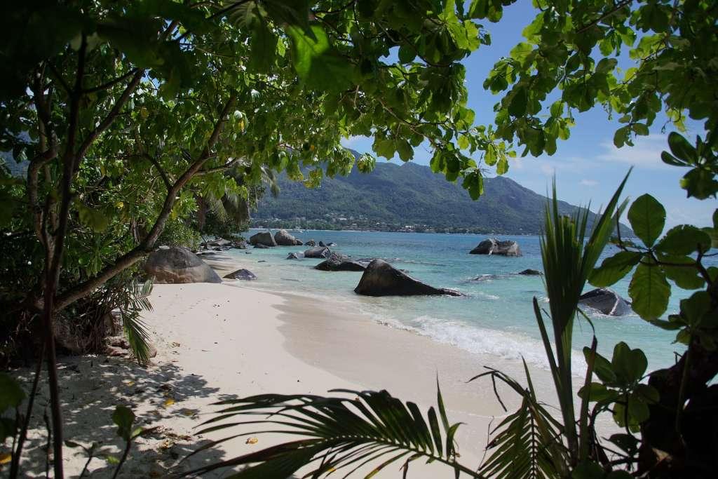 Prachtig, de Seychellen. Maar is er ook een schat te vinden?