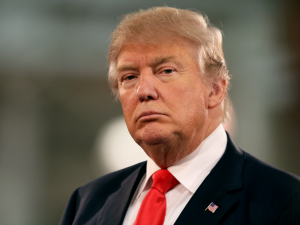 """Donald Trump noemde vrouwen """"varkens, honden en walgelijke beesten""""."""