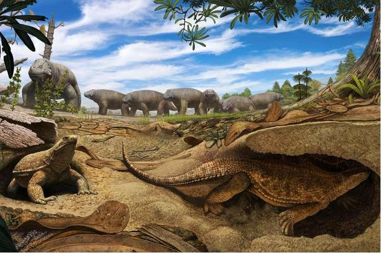 Het schild van de schildpad zou ontstaan zijn om onder de grond te kunnen komen. Afbeelding: Denver Museum of Nature & Science.