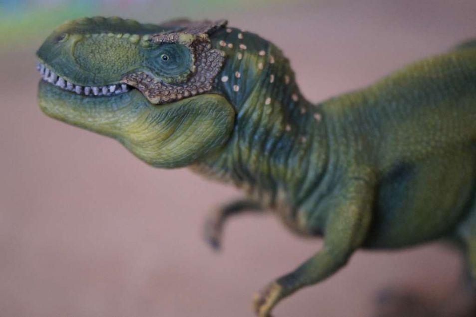 De dinosaurussen werden het slachtoffer van de massa-extinctie aan het eind van het Krijt.