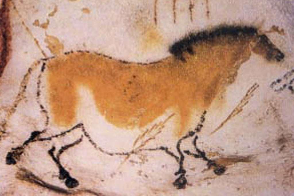 Eén van de vele tekeningen in de grotten van Lascaux.