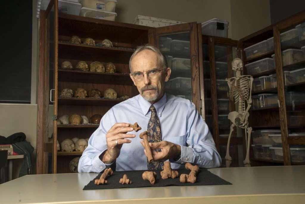 Onderzoeker John Kappelman met 3D-geprinte reconstructies van de resten van Lucy. Afbeelding: Marsha Miller / UT Austin.