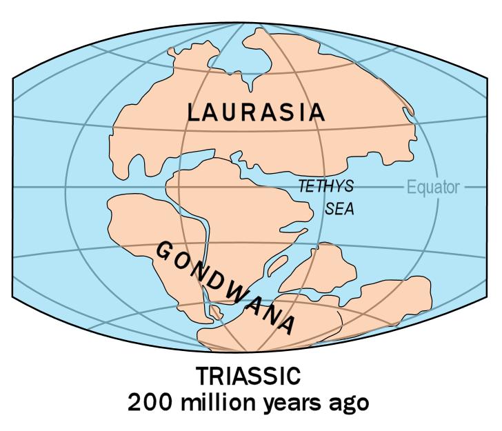 De Tethysoceaan brak het supercontinent Gondwana in tweeën. Afbeelding: USGS.