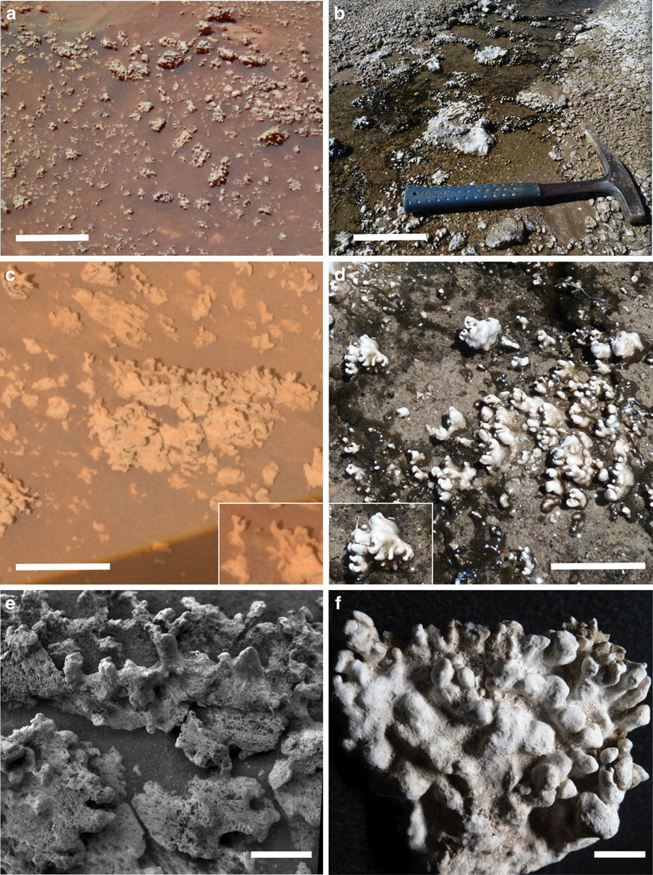Links de silica-afzettingen op Mars. Rechts de silica-afzettingen in Chili. Afbeelding: Nature Communications / doi:10.1038/ncomms13554.