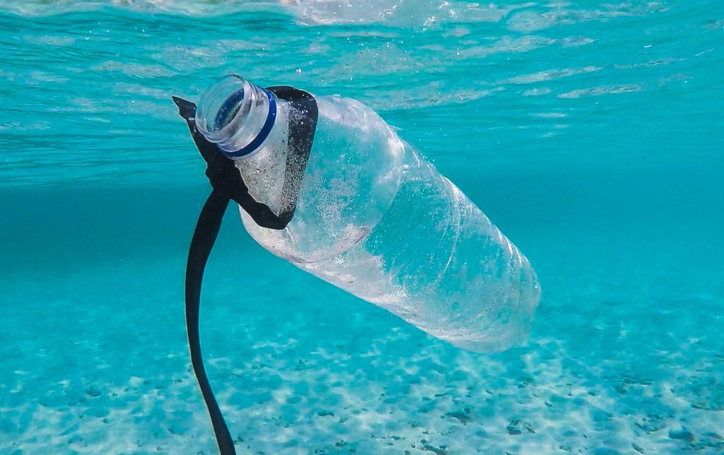 Vliegen op plastic