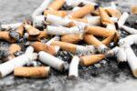 Sigarettenpeuken belemmeren de groei van planten