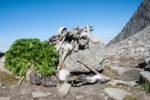 Menselijke skeletten rond Roopkundmeer omvatten zeker drie genetische groepen