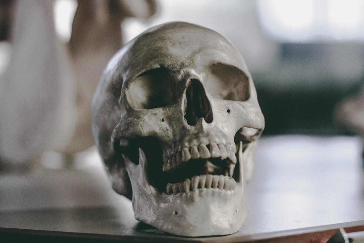 genoom-van-de-oudste-opgegraven-menselijke-skeletten-in-kaart-gebracht