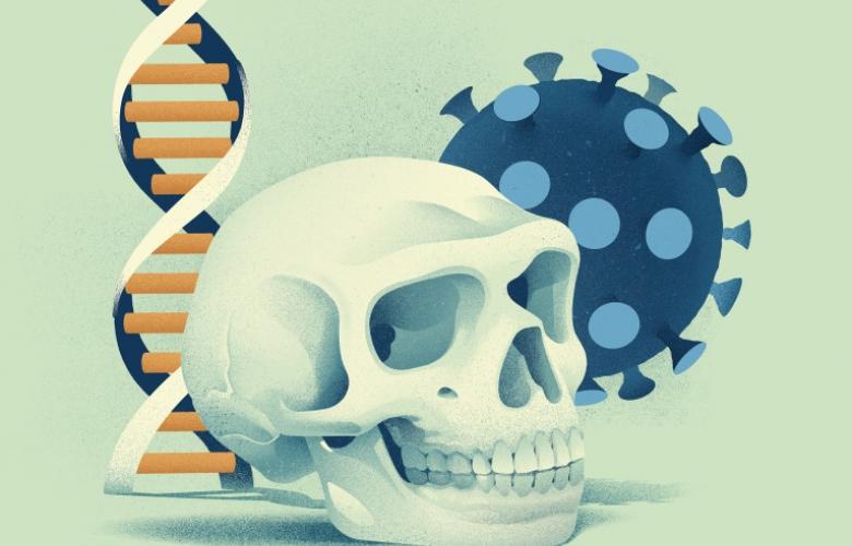 Genvarianten van Neanderthalers blijken óók te beschermen tegen ernstige COVID-19 - Scientias.nl